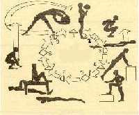 Общая физическая подготовка баскетболистов Развитие выносливости Продолжительный метод